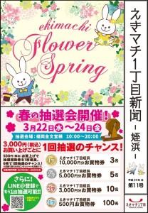 meinohama_spring